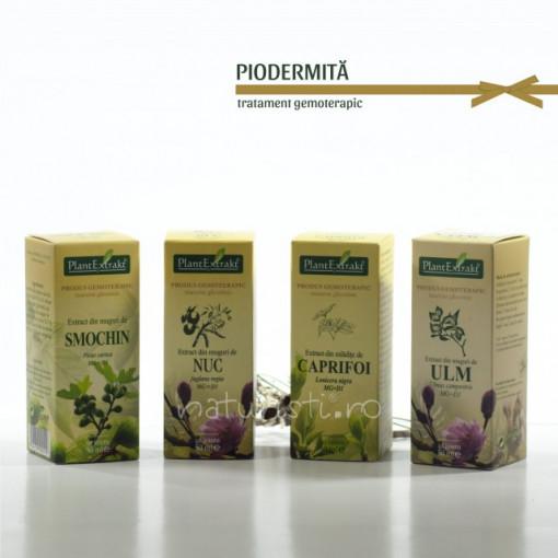 Tratament naturist - Piodermita (pachet)