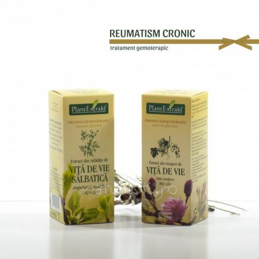 Tratament naturist - Reumatism cronic (pachet)