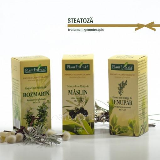 Tratament naturist - Steatoza (pachet)