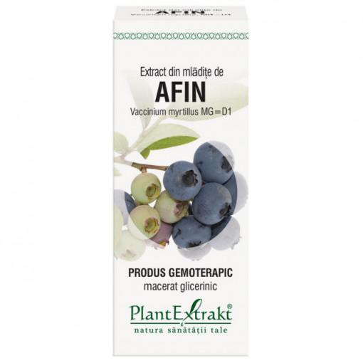 Extract din mladite de afin (VACCINIUM MYRT)