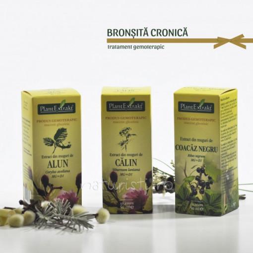Tratament naturist - Bronsita cronica (pachet)