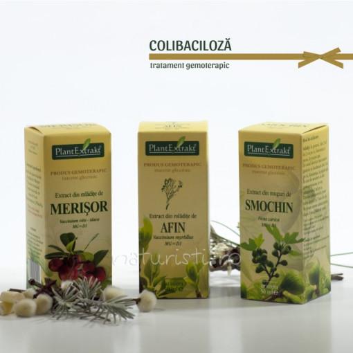 Tratament naturist - Colibaciloza (pachet)