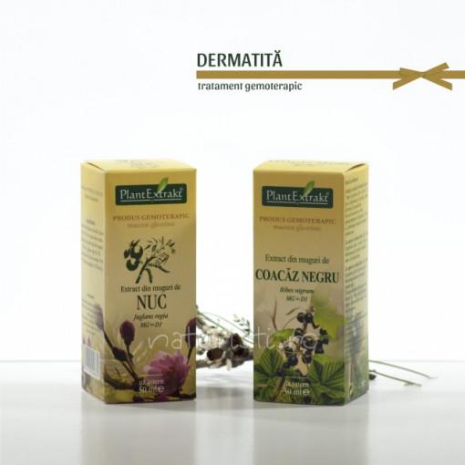 Tratament naturist - Dermatita (pachet)