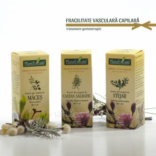 Tratament naturist - Fragilitate vasculara capilara (pachet)