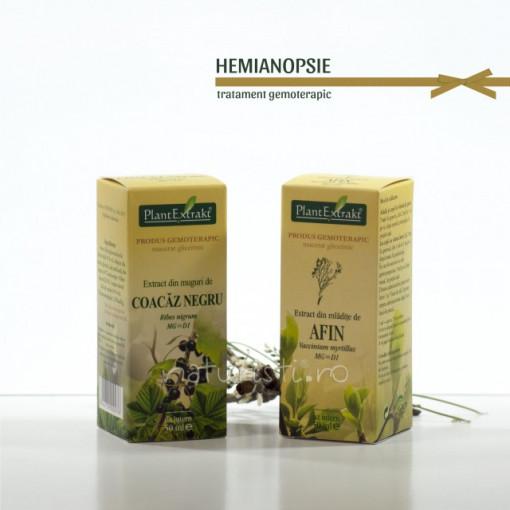 Tratament naturist - Hemianopsie (pachet)