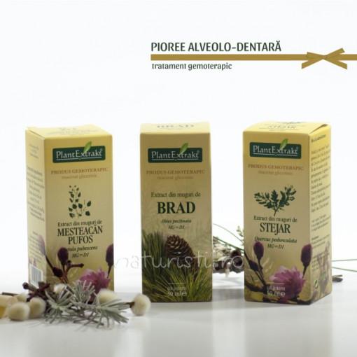 Tratament naturist - Pioree alveolo - dentara (pachet)
