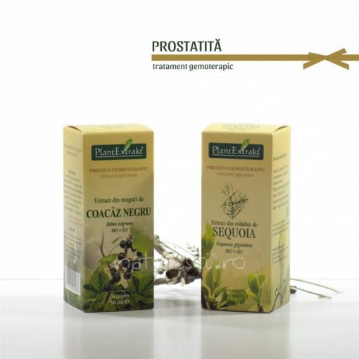 Tratament naturist - Prostatita (pachet)