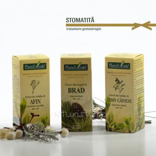 Tratament naturist - Stomatita (pachet)