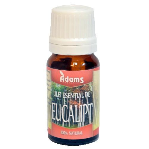 Ulei esential de Eucalipt - 10 ml