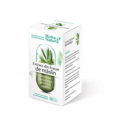 Extract din frunze de maslin - 60 cps