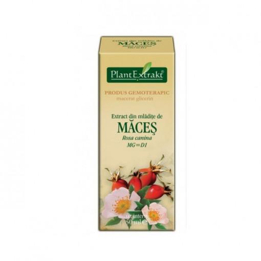 Extract din mladite de maces (ROSA CANINA)