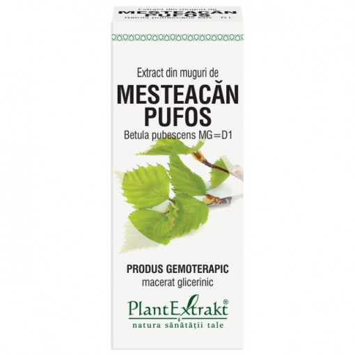Extract din muguri de mesteacan pufos 50 ml (BETULA PUB)