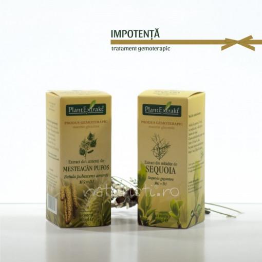 Tratament naturist - Impotenta (pachet)