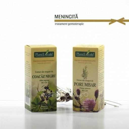 Tratament naturist - Meningita (pachet)