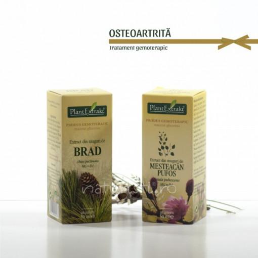 Tratament naturist - Osteoartrita (pachet)