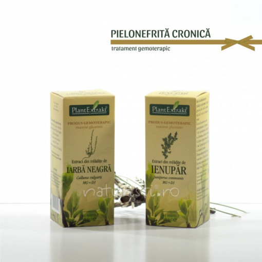 Tratament naturist - Pielonefrita cronica (pachet)