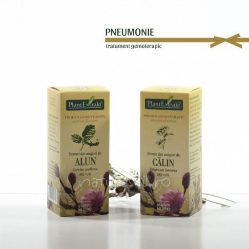 Tratament naturist - Pneumonie (pachet)
