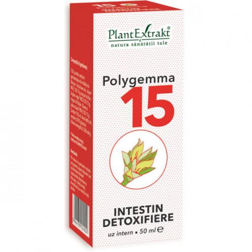 Polygemma nr. 15 - Intestin detoxifiere