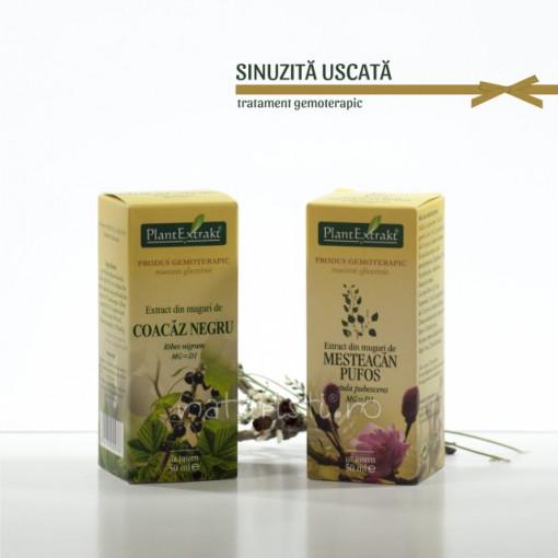 Tratament naturist - Sinuzita uscata (pachet)