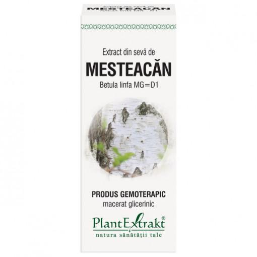Extract din seva de mesteacan (Betula linfa MG=D1) 50ml