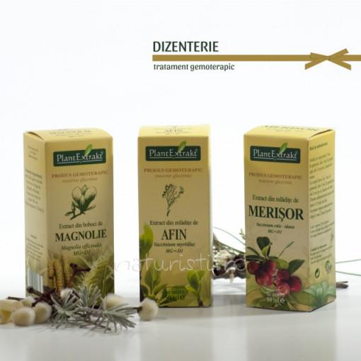 Tratament naturist - Dizenterie (pachet)