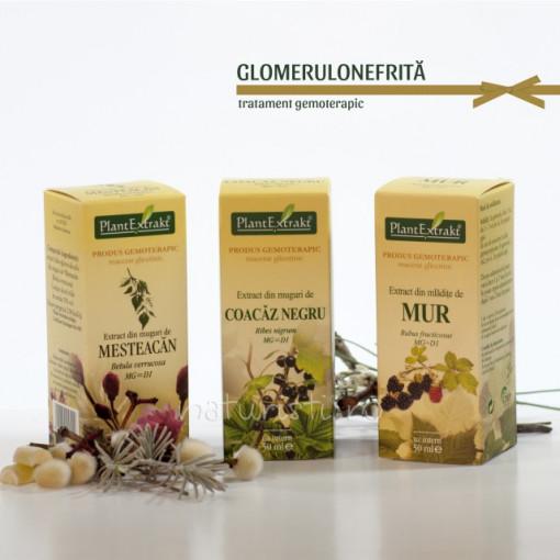 Tratament naturist - Glomerulonefrita (pachet)