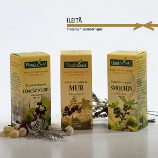 Tratament naturist - Ileita (pachet)