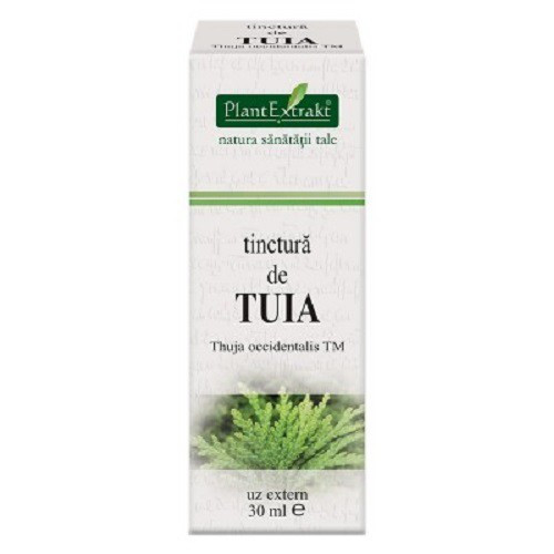 Tinctura de Tuia 30 ml (THUJA OCCIDENTALIS)