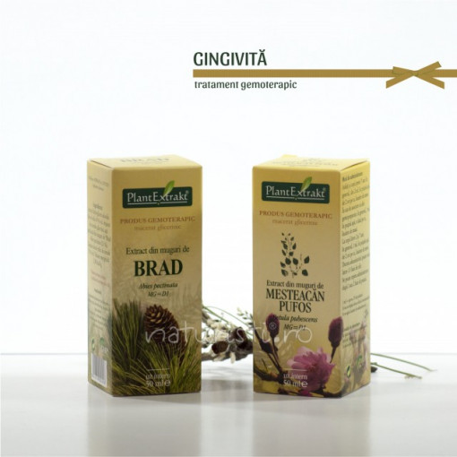 Tratament naturist - Gingivita (pachet)