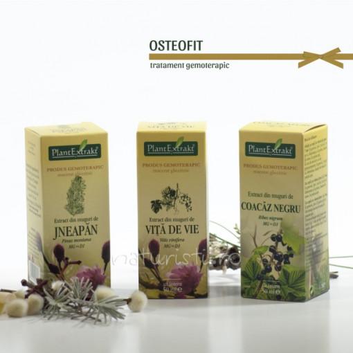 Tratament naturist - Osteofit (pachet)