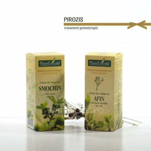 Tratament naturist - Pirozis (pachet)