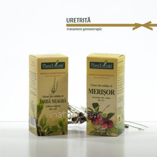 Tratament naturist - Uretrita (pachet)