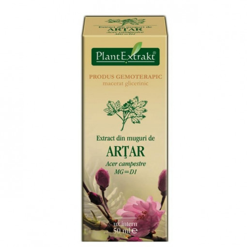Poze Extract din muguri de artar 50 ml (ACER CAMP)