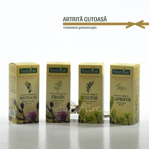 Tratament naturist - Artrita gutoasa (pachet)