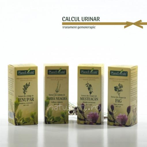 Tratament naturist - Calcul urinar (pachet)