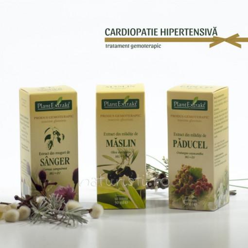 Tratament naturist - Cardiopatie hipertensiva (pachet)