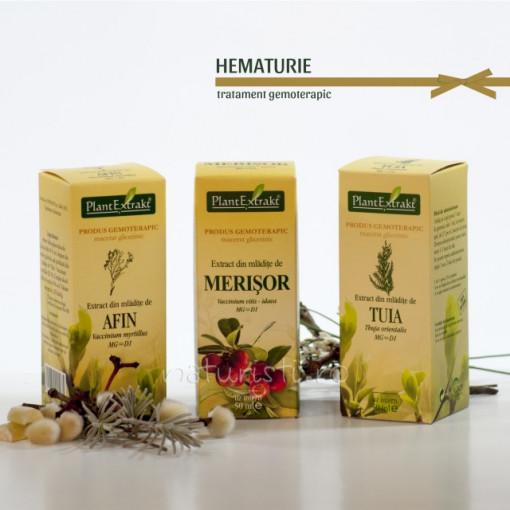 Tratament naturist - Hematurie (pachet)