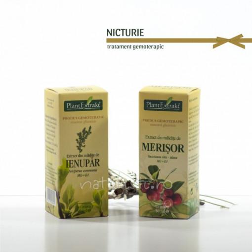 Tratament naturist - Nicturie (pachet)