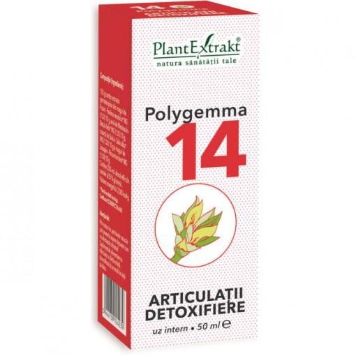 Polygemma nr. 14 - Articulatii detoxifiere