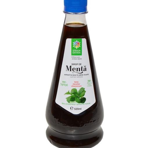 Sirop de Menta - 520 ml
