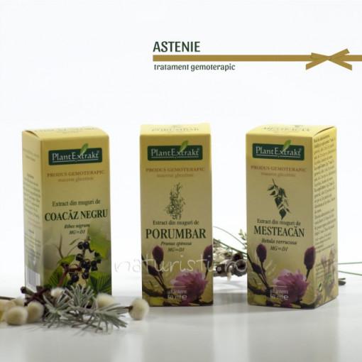 Tratament naturist - Astenie (pachet)