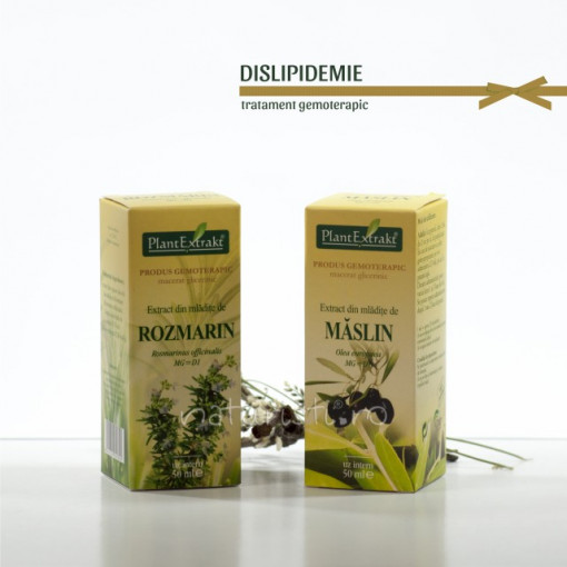 Tratament naturist - Dislipidemie (pachet 2 extracte)