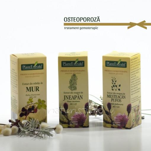 Tratament naturist - Osteoporoza (pachet)