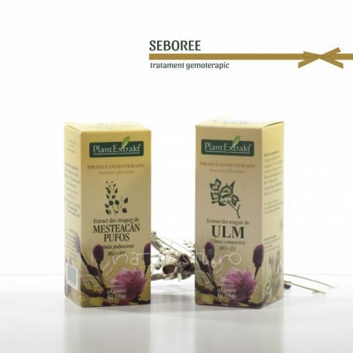 Tratament naturist - Seboree (pachet)