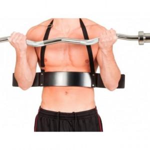 Biceps bomber