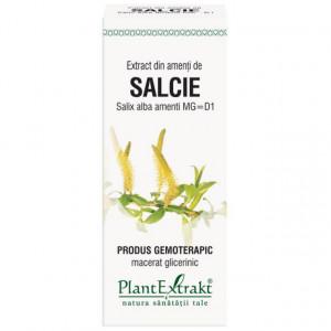 Extract din amenti salcie (SALIX ALBA amenti)