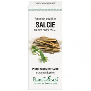 Extract din scoarta de salcie (SALIX ALBA scoarta)