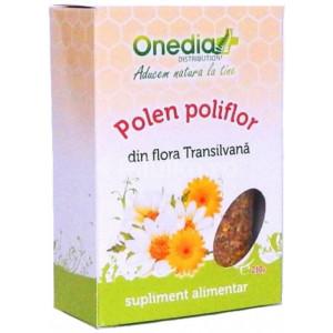 Polen poliflor uscat - 210 g