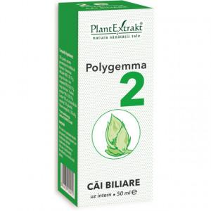 Polygemma nr. 2 - Cai biliare