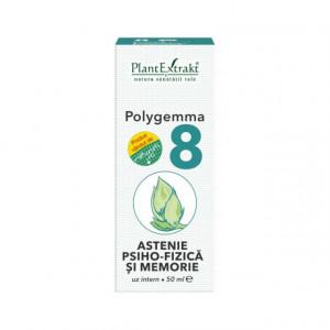 Polygemma nr. 8 - Astenie Psiho-Fizica si Memorie